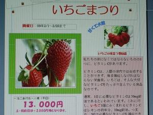 ichigo 003.jpg