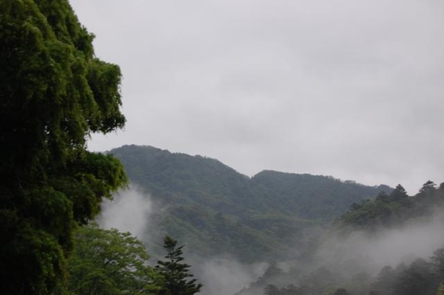 http://blog.tnky.jp/image/090517-3.JPG